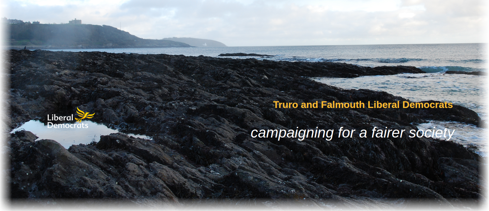 Truro and Falmouth Lib Dems